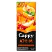 CAPPY M.SUYU ATOM 200 ML resmi