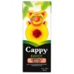 CAPPY M.SUYU SEFTALI 200 ML resmi