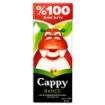 CAPPY M.SUYU %100 ELMA 200 ML resmi