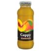 CAPPY SEFTALI NEKTARI CAM 250 ML resmi